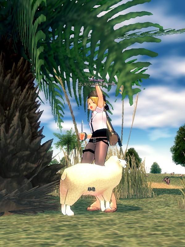 mabinogi_2010_08_29_004.jpg