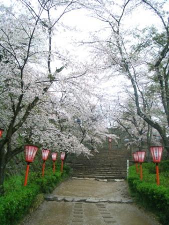 津山鶴山公園2
