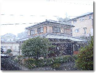 20090110yuki1.jpg