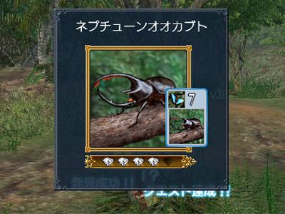 20071105202545.jpg