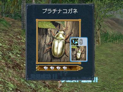 20071105202603.jpg
