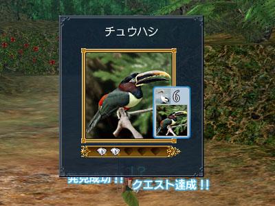 20071108094324.jpg