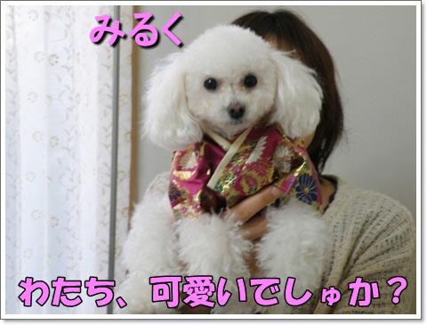 PC270110.jpg