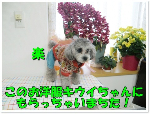 PC270250.jpg