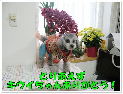 PC270258.jpg