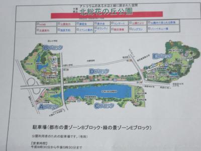 001_convert_20101011091424.jpg