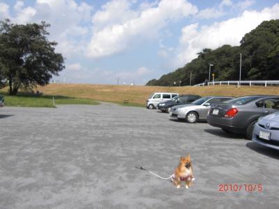 013_convert_20101007204615.jpg