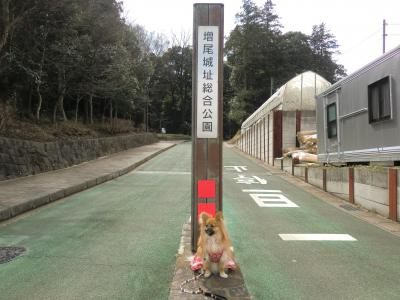 増尾城址公園入り口