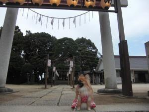 052_convert_20101022192441.jpg