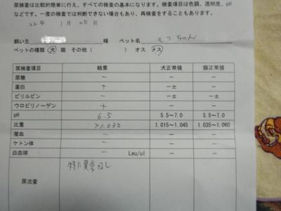 009-菫ョ豁」_convert_20100124194642