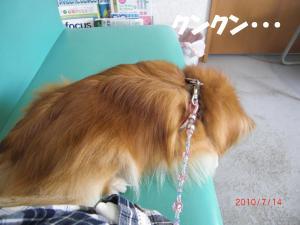 015繝シ繧ウ繝。繝ウ繝・convert_20100715205620