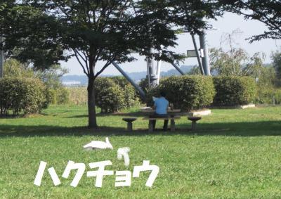 004繝シ繧ウ繝斐・繧ウ繝。繝ウ繝・convert_20100923225226