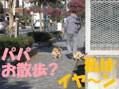 089-繧ウ繝斐・繧ウ繝。繝ウ繝・convert_20101108152406