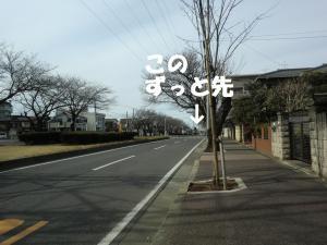039繝シ繧ウ繝。繝ウ繝・convert_20110304210544
