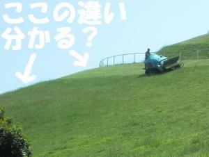017繝シ繧ウ繝斐・繧ウ繝。繝ウ繝・convert_20110520070441