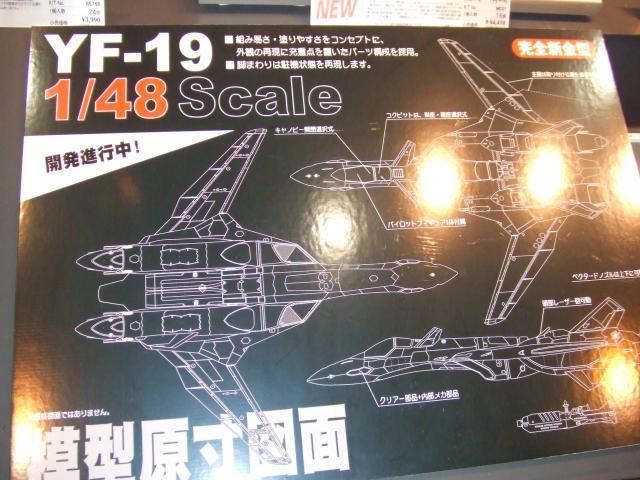 YF-19_convert_20090519012733.jpg