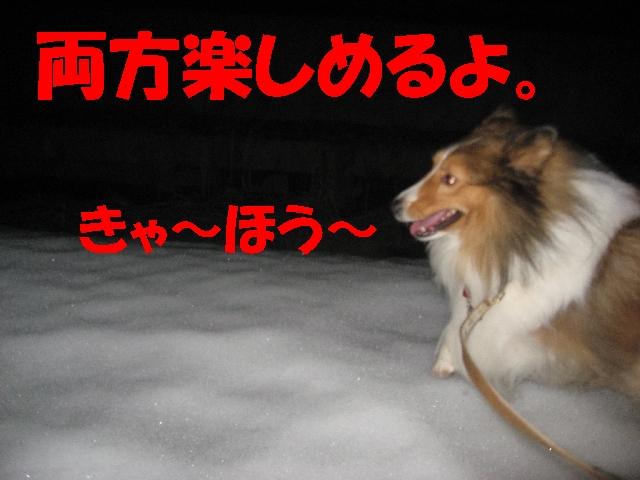 IMG_4899_1_1.jpg