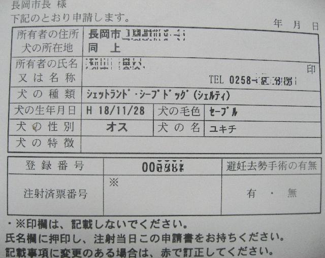 IMG_5177_1.jpg