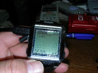 腕Palm充電中.jpg