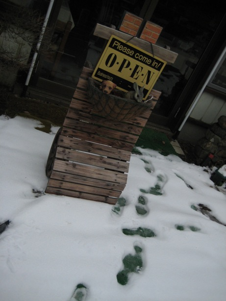 もちろん雪積もっています