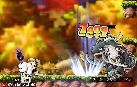 Maple0000_20080822085036.jpg