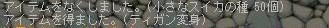 Maple0000_20080827114954.jpg