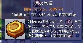 Maple0000_20080903075213.jpg