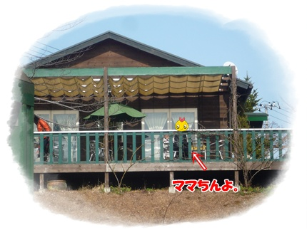 P1070963.jpg