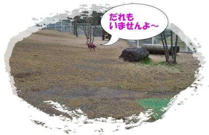P1070988.jpg