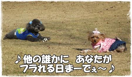 P1160261.jpg
