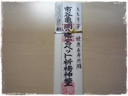 P1170534.jpg