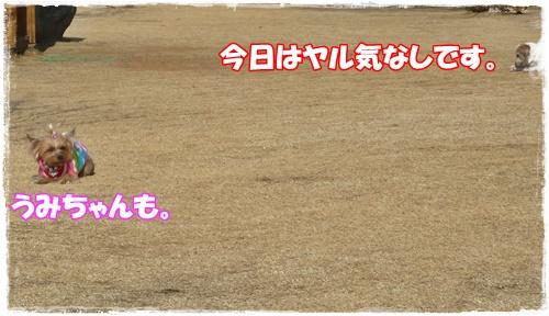 P1180090.jpg
