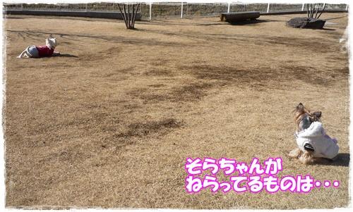 P1180722.jpg