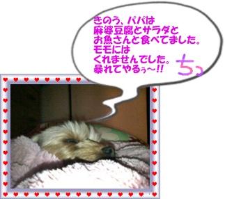 SN3F00070001.jpg