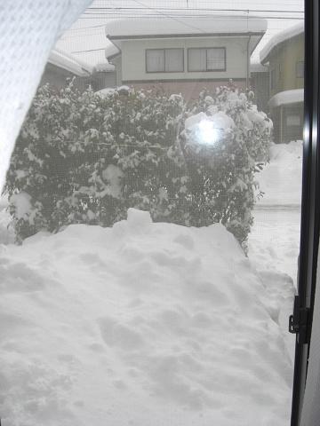 豪雪・・・