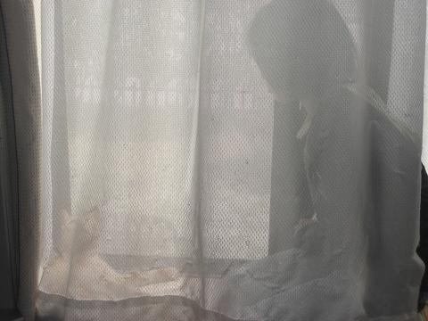 ひなたぼっこ4