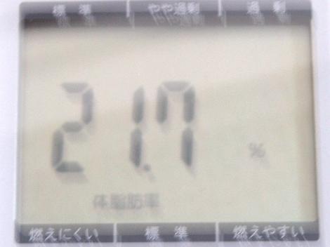 611体脂肪率
