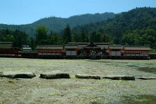 厳島神社干潮6神殿
