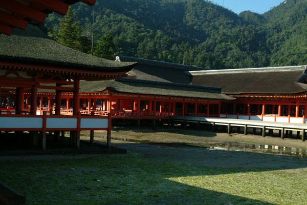 厳島神社参拝1