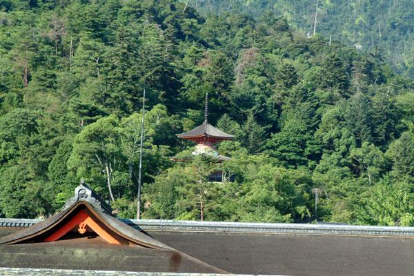 厳島神社参拝17塔