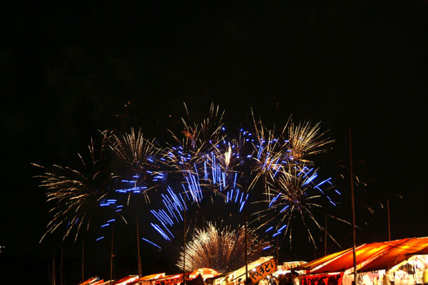 2008紀ノ川祭り花火2