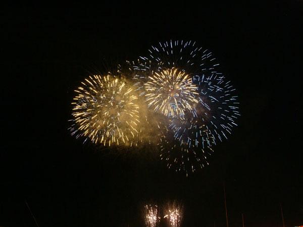 2008紀ノ川祭り花火3