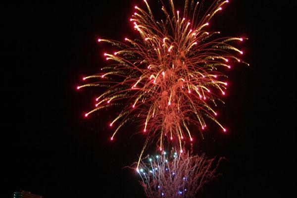 2008紀ノ川祭り花火5