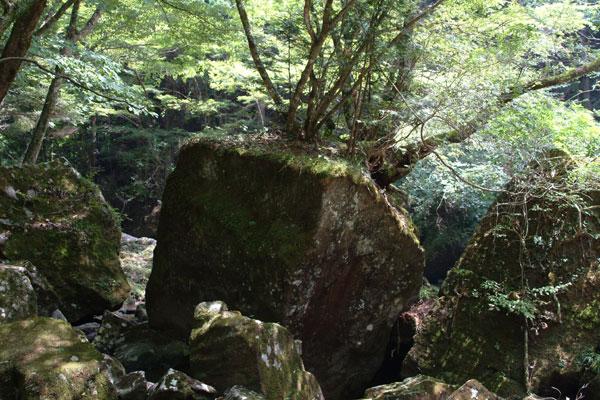 赤目四十八滝七色岩