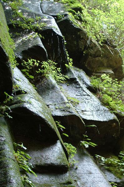 赤目四十八滝雨降滝