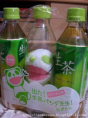 生茶パンダ先生