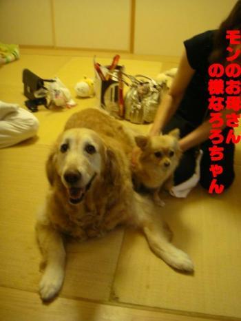 繧阪m縺。繧・s_convert_20090722090437