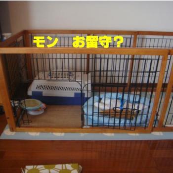 繝「繝ウ繝上え繧ケ_convert_20090813191740
