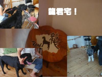 鮴榊菅螳・convert_20090817193620