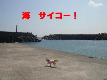 繝「繝ウ縺ィ豬キ_convert_20090908145006